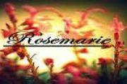 Μαρία Τριανταφύλλου: Το όνομα πίσω από τη Rosemarie