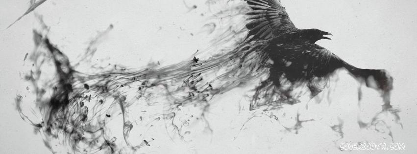 dark-messenger-bird-facebook-timeline-covers