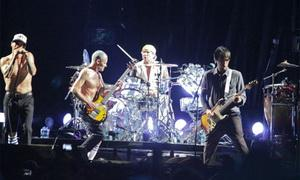 zzred hot chilli peppers athens LARGE